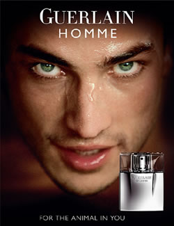 Guerlain Homme, The New Male Fragrance From Guerlain Oct 2008